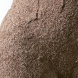Torso Detail